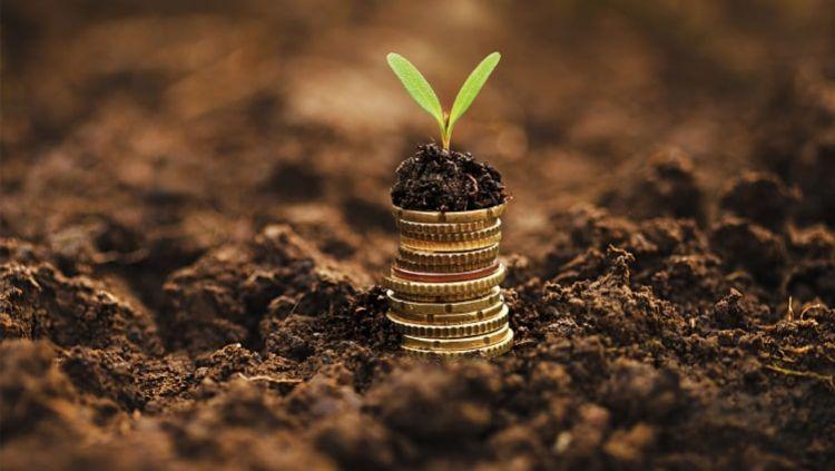 Investuok pinigus – neleisk savo santaupoms nuvertėti!
